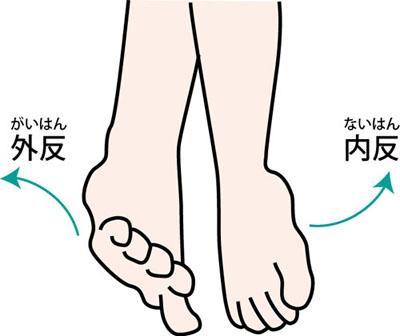足首の内反と外反